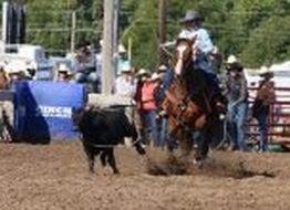 CSC Cowgirl Makes National Rodeo Finals