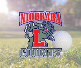 Lusk Duo Each Places 11th At State Golf