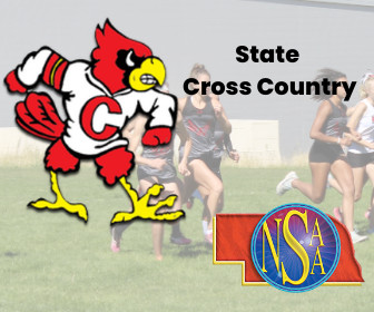 Fuller 10th, Cardinals 3rd At State Cross Country