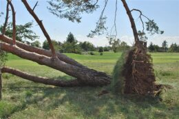 Devastation Mounts From Midwest Storm