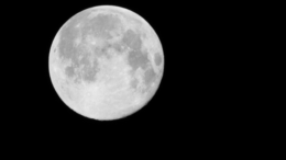 It's A Full Moon, Blue Moon, Hunter's Moon, Micro-Moon, And Mini-Moon Tonight