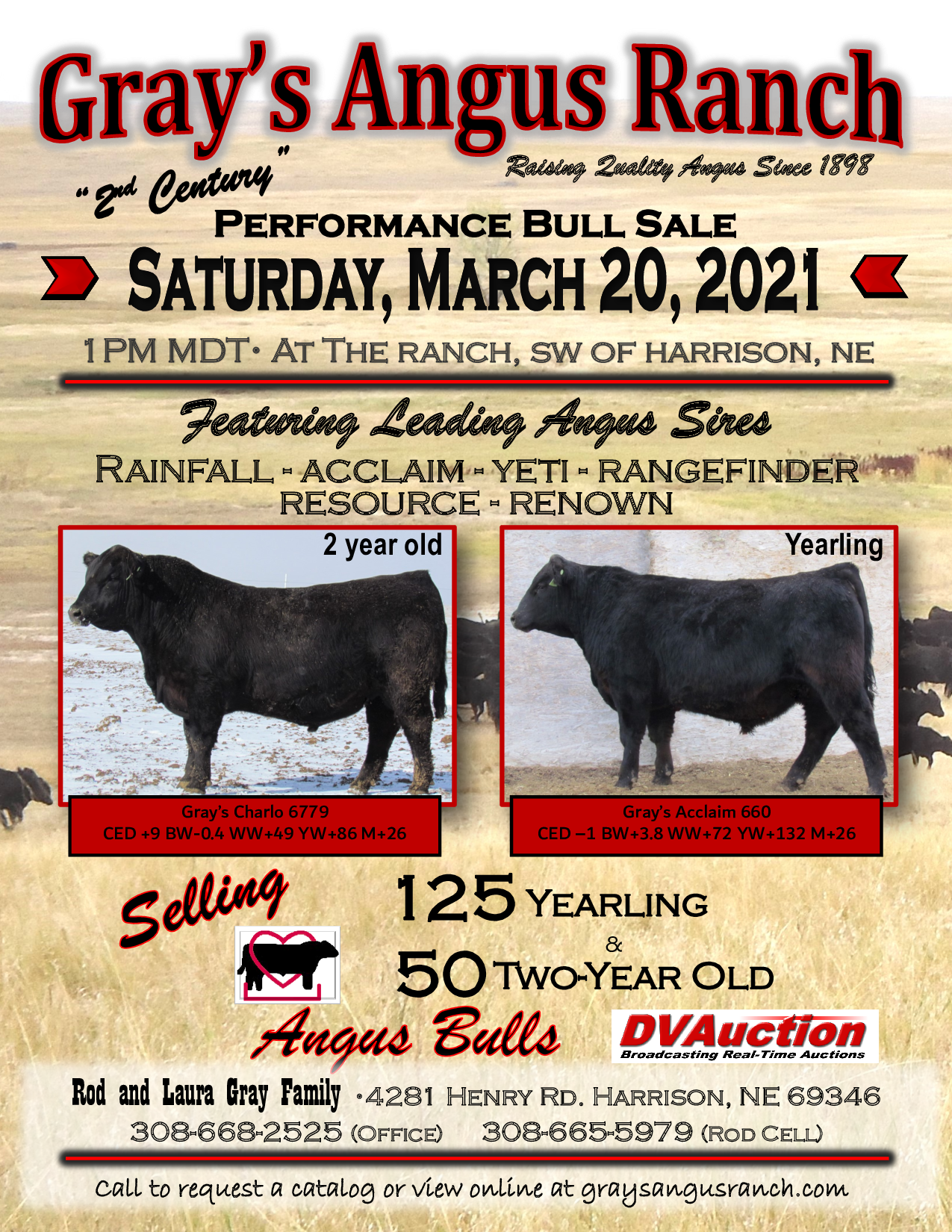 Gray's Angus Performance Bull Sale