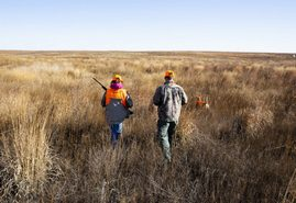 Dawes County Site Included In Special Youth Hunt For Upland Birds