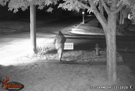 No Charges For Woman Caught On Camera Stealing Political Yard Sign