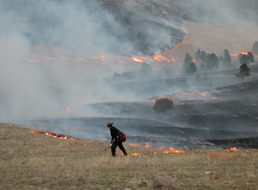 Prescribed Burn Offers Training Opportunity For Crawford VFD