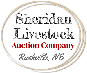 Sheridan Livestock Upcoming Sales ... 1/20